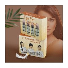 Perma Blend - Four For Eyebrows SET 4 Stück x15ml